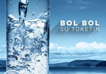 bobrek-icerik-1